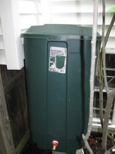 Rain Water Barrel